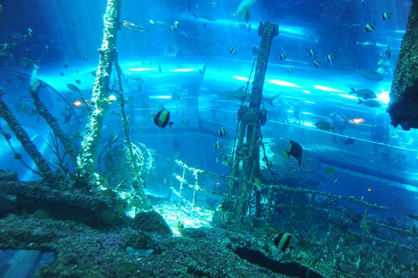 沈船探險展區照片