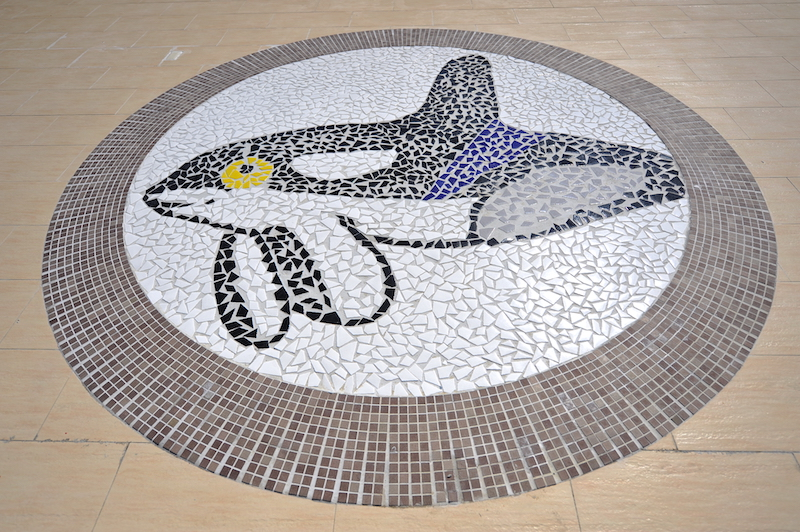 鯨典館地板的馬賽克拼貼