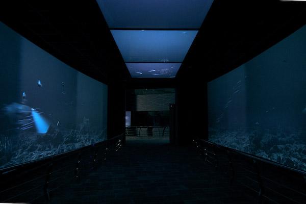 深海水域照片