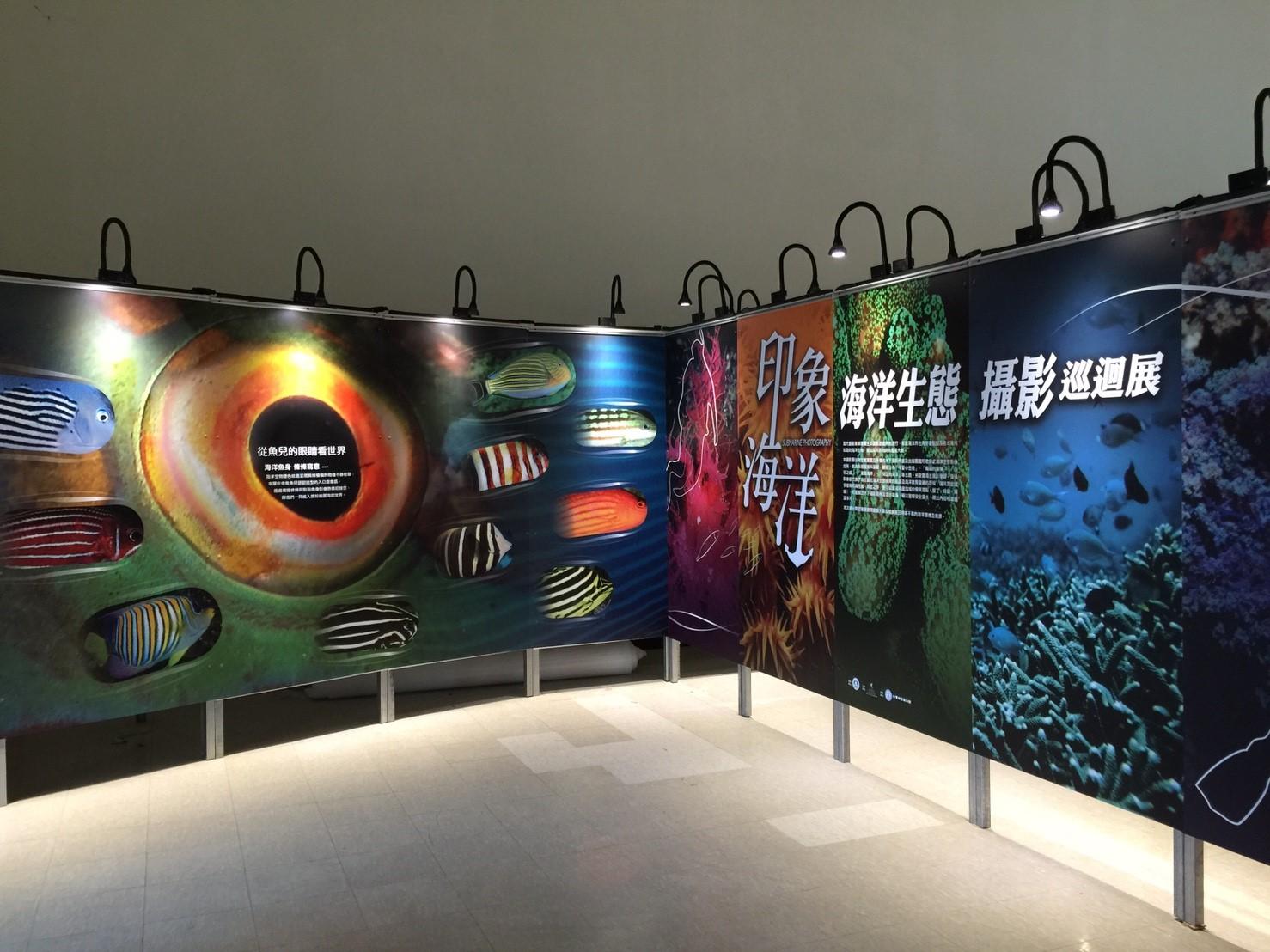 印象海洋-海洋生態攝影巡迴展