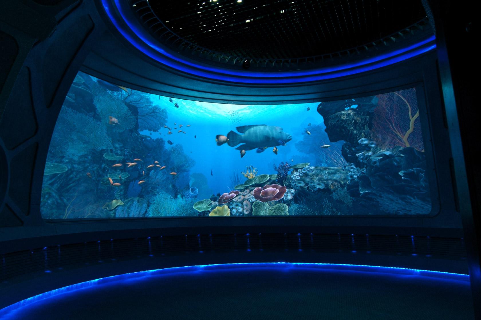 深海水域展區照片