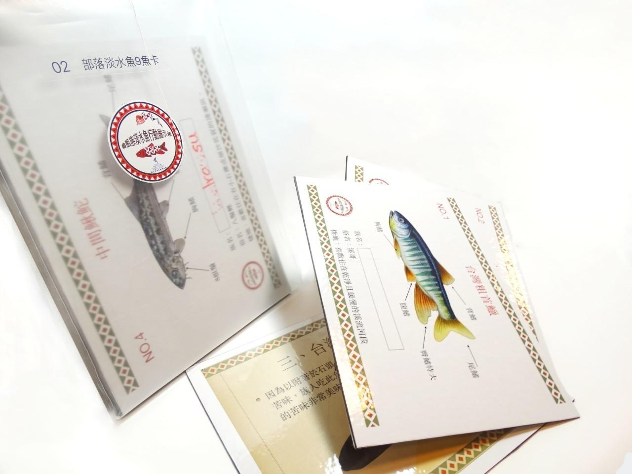 魚圖鑑與標本-2