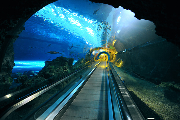 海底隧道照片