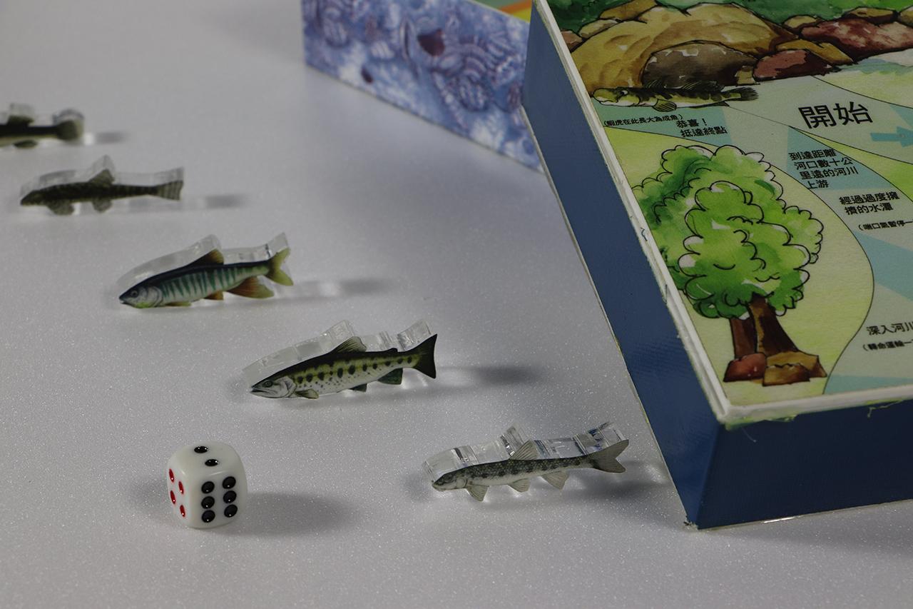 淡水魚來龍去脈行動展示箱
