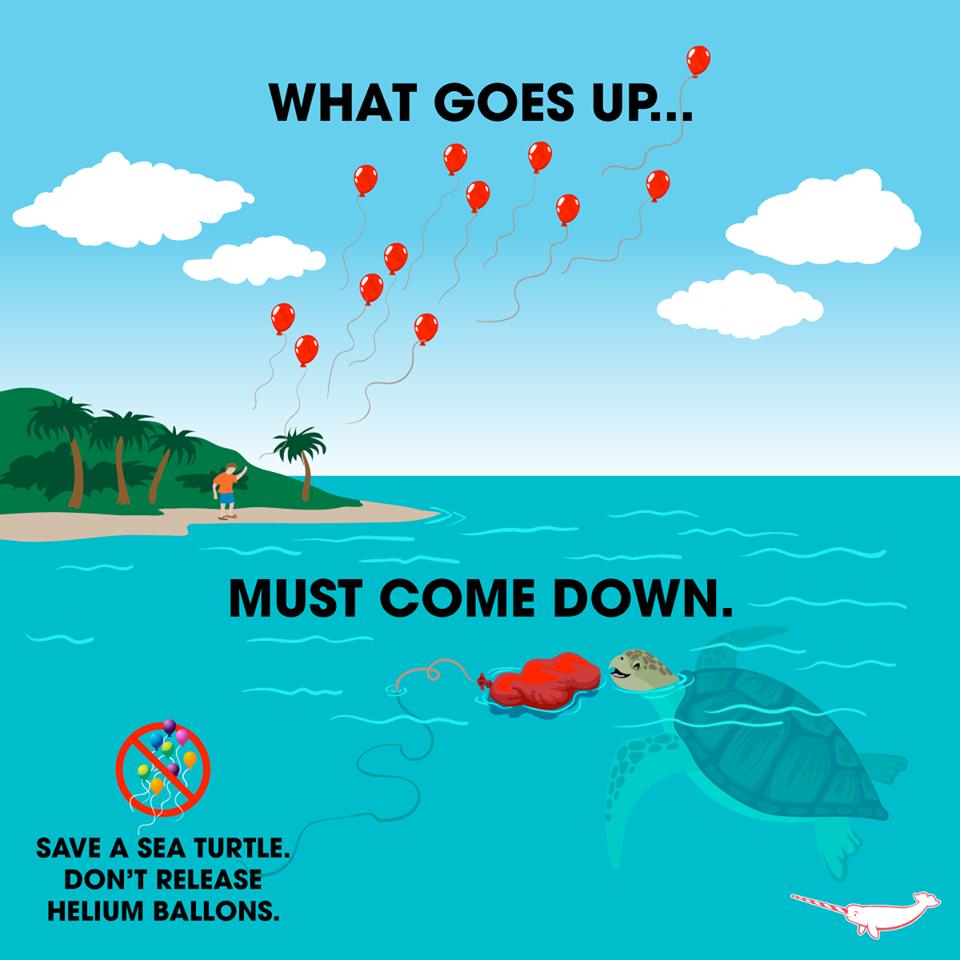 天降殺手-高空氣球危害海洋生物