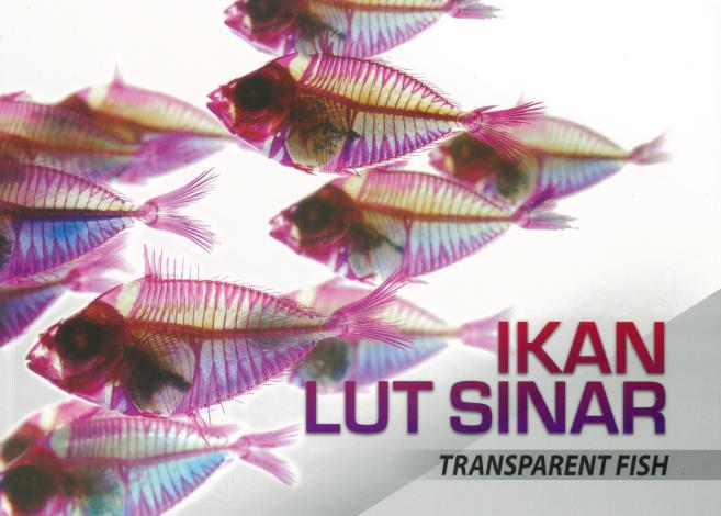 3「透視・魚」馬來文版「IKAN LUT SINAR」封面