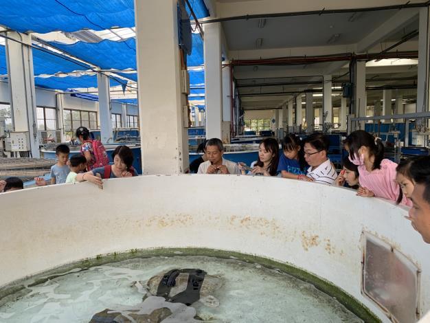 海生館講師帶領民眾認識海龜收容中心的海龜狀況.JPG