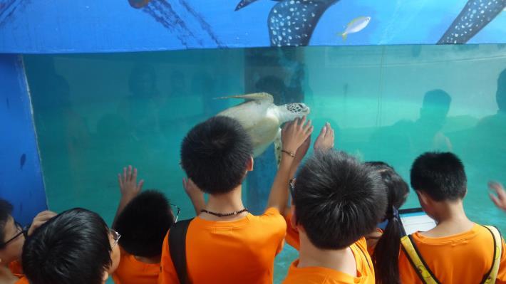 海龜收容參訪