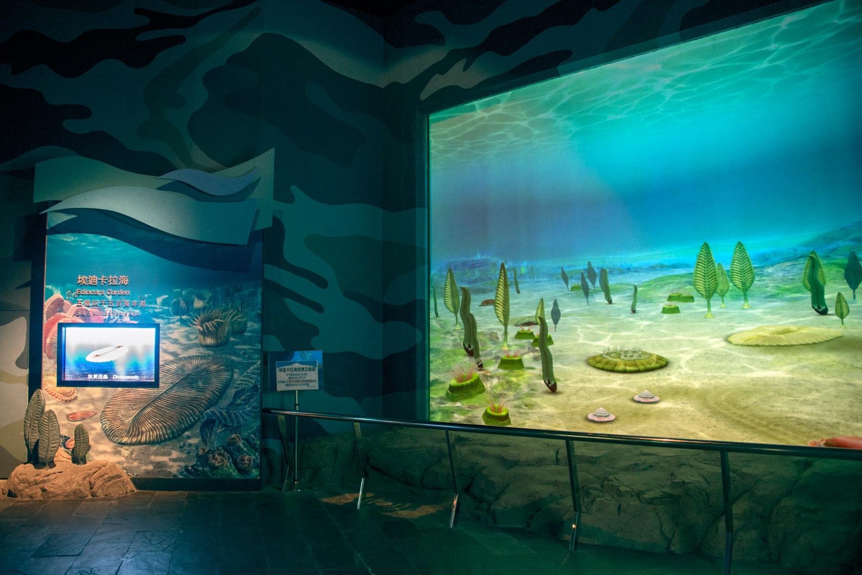 埃迪卡拉海洋花園