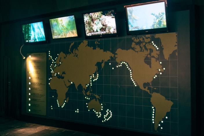 世界海藻森林