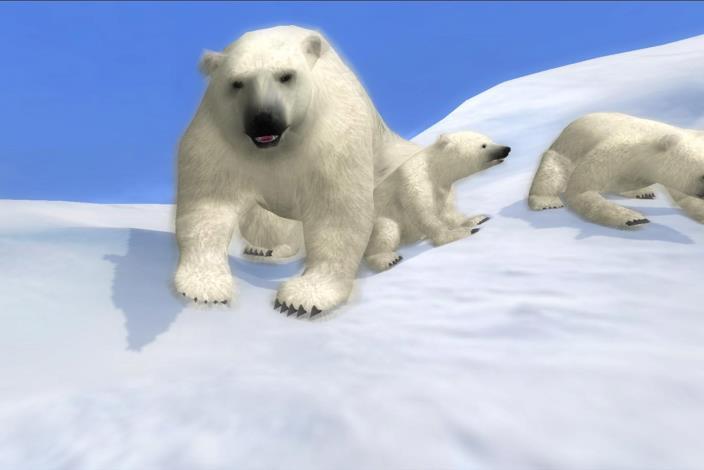北極區影片展示