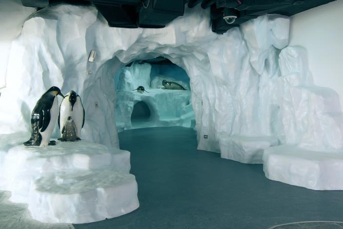 極地探險入口