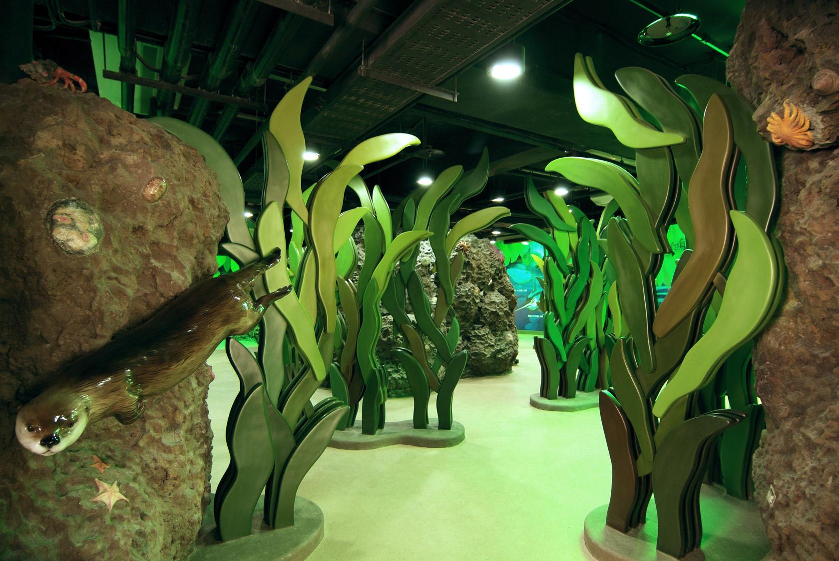 海藻迷宮與極地探險