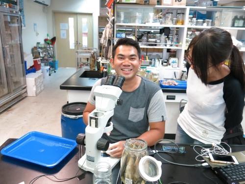 新加坡實習生Kahlis與香港來的實習生在進行魚類分類研究