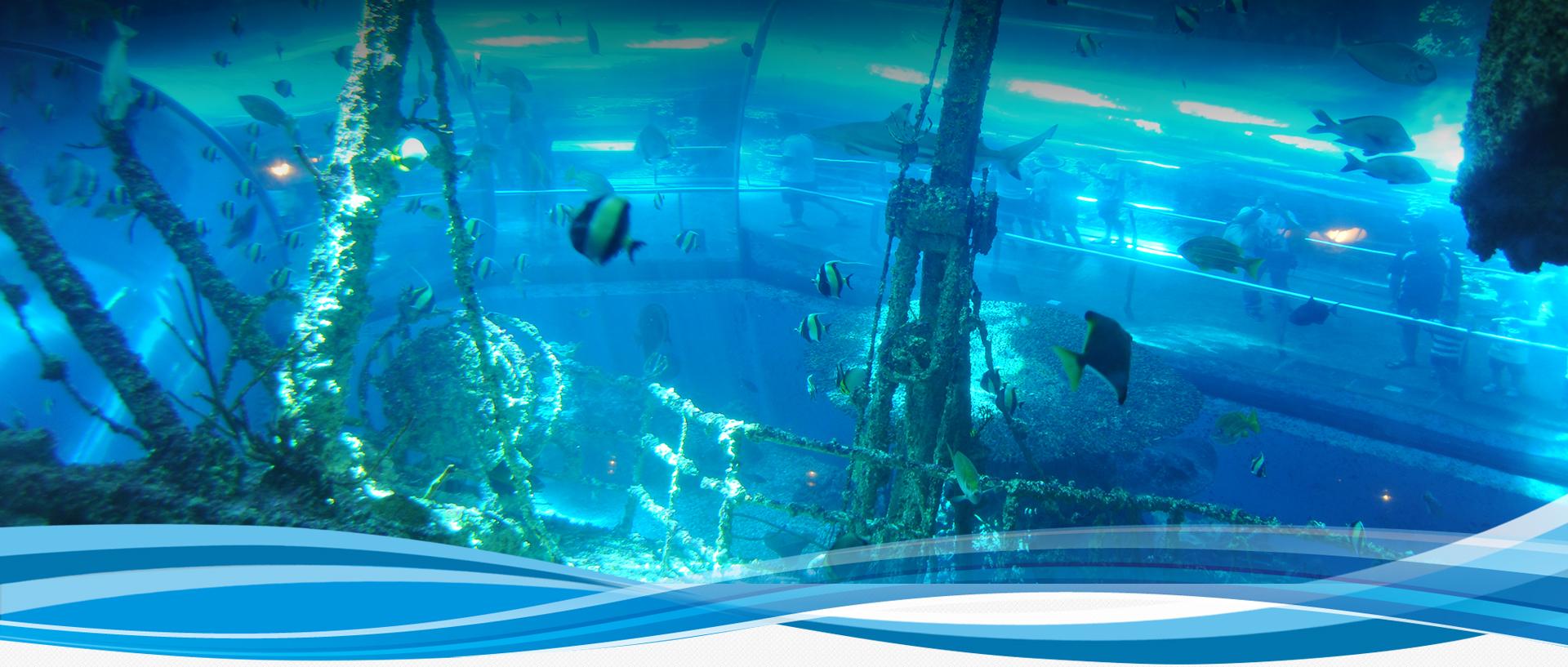 國立海洋生物博物館-珊瑚王國館平面圖