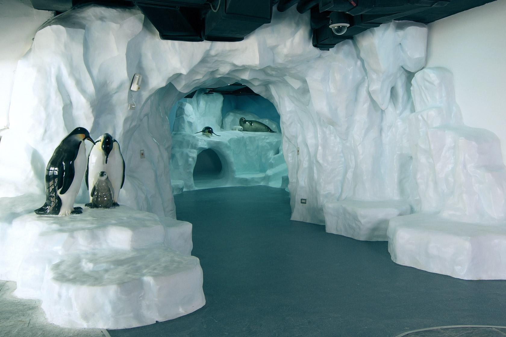 Adventure in the Polar Region