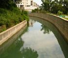 桃園石門大圳的水泥堤岸造成棲地單一化,導致生物多樣性降低(郭美貞攝)