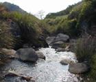 陽明山大坑溪上游