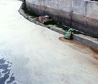 許多的家庭與工業廢水會隨著河流,排至海中,影響海洋生態環境 (吳松霖 攝影)。