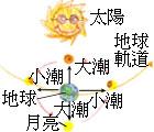 潮汐形成的原因,與太陽、月球與地球的位置有關  (李若韻 繪圖)。
