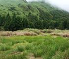夢幻湖在七星山東南麓,高約860公尺,成因迄今仍未明確,可能是火口湖,也可能是噴氣孔造成的凹地積水而成或是火山間窪地。夢幻湖於冬季水量豐沛時才容易看得出湖泊的型態。(侯昌豪 攝)