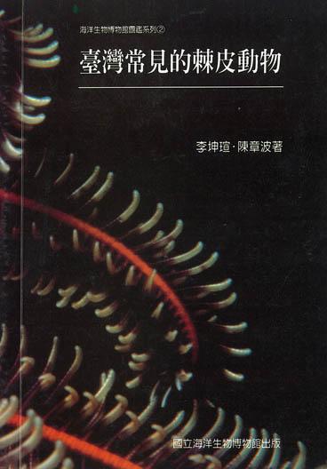 台灣常見的棘皮動物