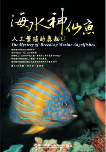 海水神仙魚人工繁殖的奧秘